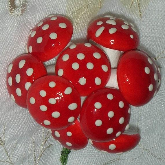 Magic Mushrooms Red & White