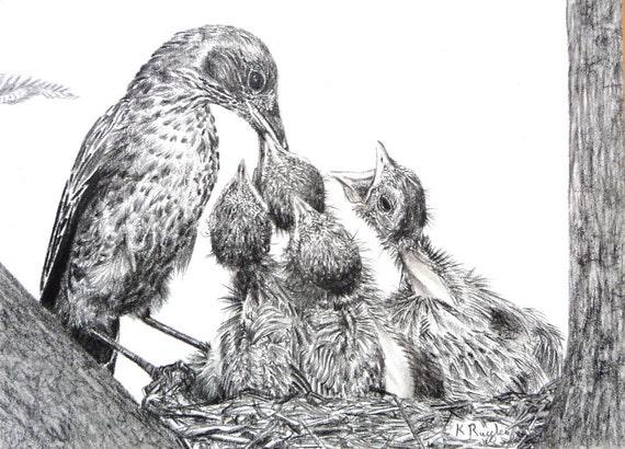 Blackbirds original charcoal drawing