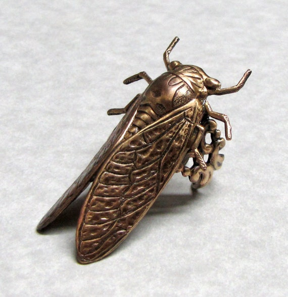 Forest Cicada RIng