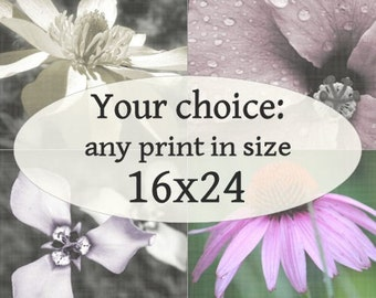 16x24-inch Fine Art Photograph of your choice