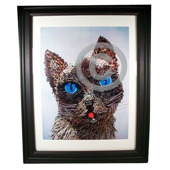 Blue-Eyed Kitten Fashioned from Computer Parts. Signed Photo Print.