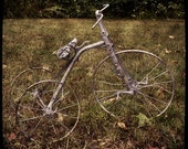 Vintage Tricycle 8x8 Metallic Fine Art Photograph