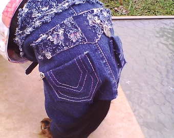 Dog Jeans