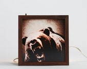 8x8 Grizzly Bear light box(Made to order)