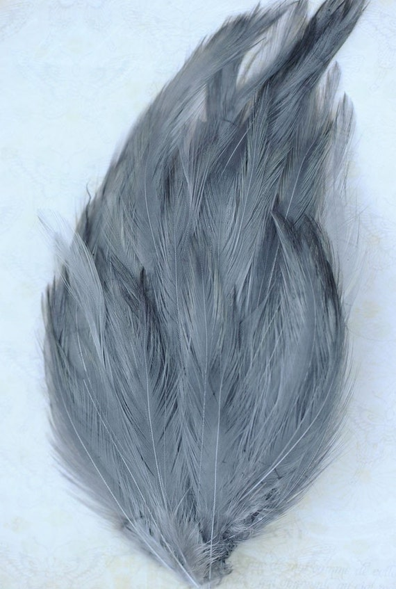 1 Grey Feather Hackle Pad