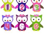 Monthly Onesie Stickers... Girly Owls...UNCUT...Please READ... WATERPROOF...An Original Seller
