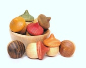 Wood Toy- Autumn Acorns- Seasonal Education Fun-