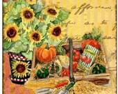 Pretty Fall Sunflower Coaster