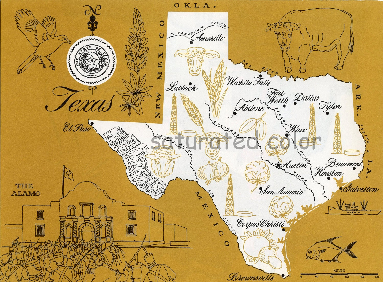 Texas Map ORIGINAL Vintage Mustard Yellow Colorful
