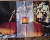 A set of five Autumn picture notecards/ postcards with envelopes.