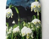 Early Spring Blooms - White Snowdrops Celebrate Spring- Handmade Square Envelope