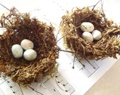 "Cottage Birds Nest Decor - 3"" Handmade Nests w/ White Eggs, Set of TWO"