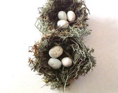 """Green Woodland Birds Nests - 3"""" primitive nests w/ white eggs, set of TWO"""