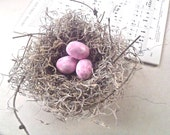 Home decor - Shabby Chic Birds Nest  - Spanish Moss 6 Inch Nest w/ Pink Eggs