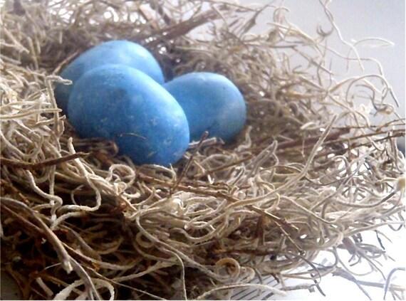 Spring Bird Nest - Spanish Moss w/ Blue Eggs - Summer Cottage Stlye 6 Inch Nest