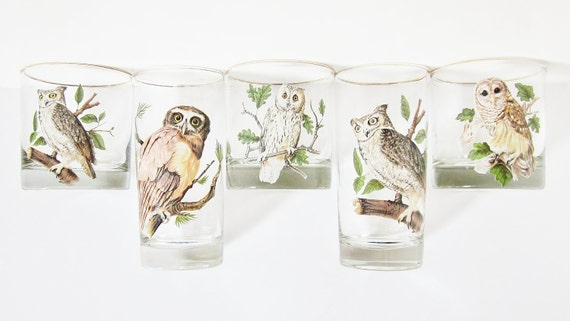 Vintage Owls Glassware Set Drinking Glasses