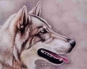 Wolf Card  1 fine art note card  5X7 blank inside for your personal message