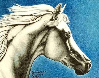 Arabian, Equine Art, Arab, White Horse, signed numbered matted print 8 X 10""