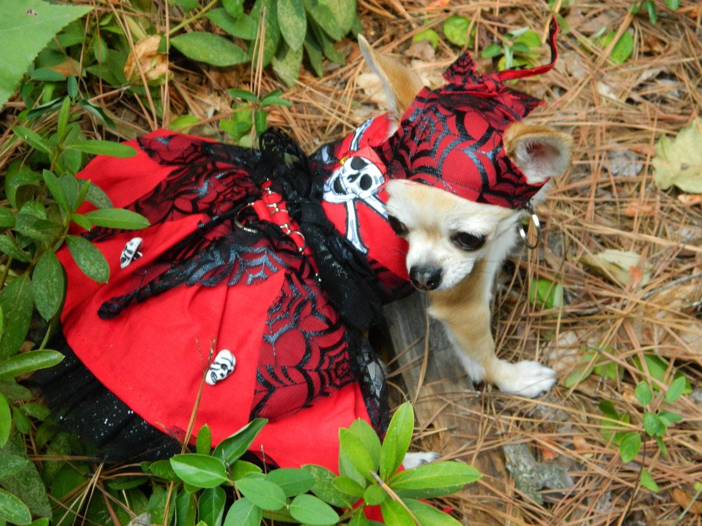 Dog Holiday Dresses