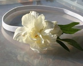 Head Band Elegant Beautiful White Flower with Two Green Leaves On A White Stretchy Lavishly Popular  Interesting  Remarkable