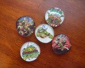 TMNT Teenage Mutant Ninja Turtles Glass Magnets
