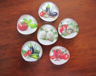 GOURMET KITCHEN Fresh Vegetables CHEF Magnets Set of 6 Super Strong Glass Bubble Magnets