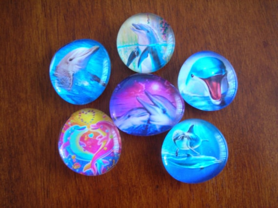 Tranquil DOLPHIN Magnets