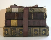 Antique Books Bundle Classics Brown Gold Silver Leather Dickens Balzac
