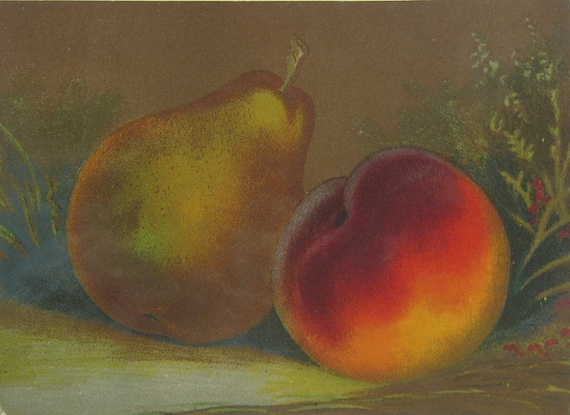 Antique Chromolith Small Fruit Print Peach and Pear Kitchen Art