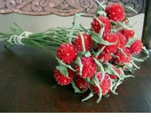 Dried Flowers  RED Globe Amaranth ( Gomphrena) FLOWERS Wedding Valentine Christmas Floral Prim Decor Crafts Shabby Rustic