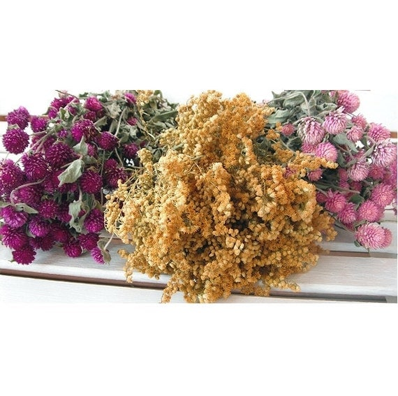 Dried Flower Color COLLECTION Floral Lovely for Wedding, Prim, Craft, Shabby Chic,...