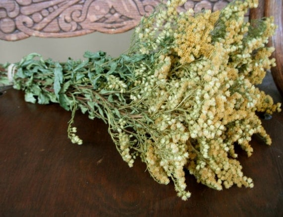 Dried Goldenrod Flowers for Wedding Country Prim Decor Craft Cottage Floral Supplies, Rustic, shabby, folk, Wreath Making, Natural Flowers