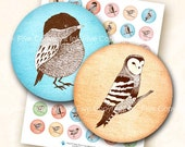 Woodland Birds 1  inch bottle caps circles images. Digital download collage sheet for bottle caps, scrapbooks, jewelry, magnets