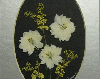 Pressed Flower Picture No. 178
