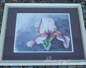 NEW BEGINNINGS - Giclee Watercolor Print - Iris Painting - Framed and Matted 22x18