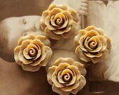 Limited discount Buy 1 Get 1 Free 20pcs Wholesale Beautiful Colorful Rose Flower Resin Cabochon  --20mm(CAB-BS -14)