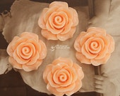Limited discount Buy 1 Get 1 Free 20pcs Wholesale Beautiful Colorful Rose Flower Resin Cabochon  --20mm(CAB-BS-49)