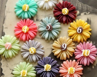 20pcs Unique Color Beautiful  Colorful Gerbera  Flower Resin Cabochon   --14mm(CAB-AU )
