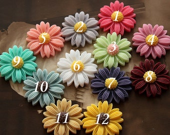 Wholesale Beautiful Mix Colorful Daisy Flower Resin Cabochon  -   -22mm(CAB-BU-MIXSS )