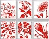 Botanical Prints Red White Custom Colors set of 6 each 8x10