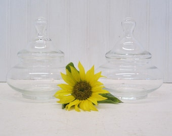 Pair of Short Round Clear Glass Apothecary Jars Terrarium