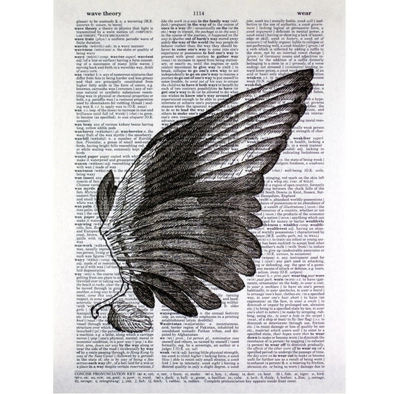Right Wing Print on a Vintage Book Page
