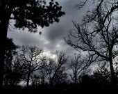 Stormy Weather / Cloudy Day / Storm Clouds / Winter Sky / 8 x 10  Black & White Fine Art Photo