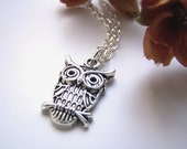 the wise old owl necklace in silver.