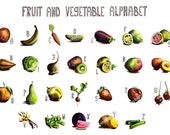 Fruit vegetable poster-print from original ink and watercolor illustrations-A to Z-Alphabet nursery art