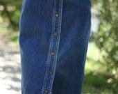 denim high waist snap skirt