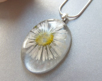 Real Daisy Necklace, Real Flower Eco Jewelry, Pressed Flowers, Botanical Necklace