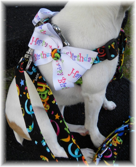 Harness Step In Happy Birthday Harness w Ribbon Bows Custom Handmade STEP IN Dog Harness Ergonomically Correct Choose Size
