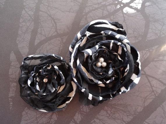 Zebra hair flower,