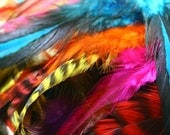Mixed bright color feathers rooster saddle hair extensions salon supplies